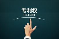 专利初审会下审查意见吗