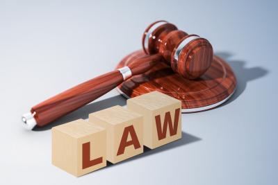 抵押权的法律规定