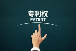 专利所有权人可以是几个